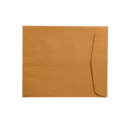 "28lb Brown Kraft Negative Preserver, Open End, Plain - Not Printed, with Flap, 10-1/2"" ..."